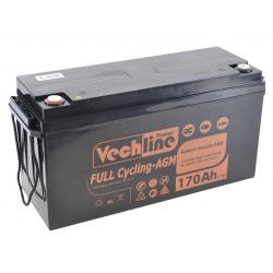 Batería camper Vechline de Ciclo Profundo Agm 170 Ah